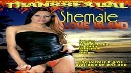 افلام سكس نيك شيميلات افلام سكس نيك شيميل اجنبي بعنوان نساء لجميع الاغراض نيك شيميل