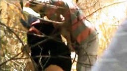 افلام سكس نيك مصري طالب ثانوي ينيك مدام اربعينية ويقطعها نياكة نيك مصري شديد